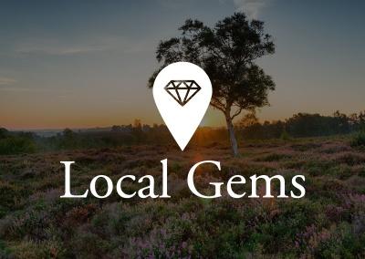 Local Gems